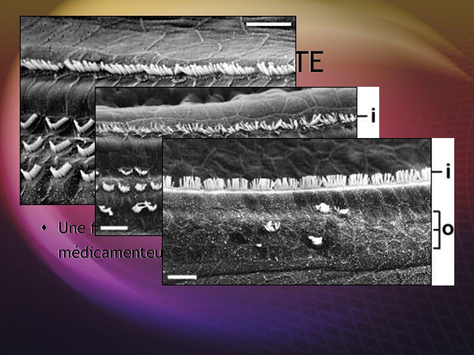 OTOTOXICITE Atteinte bilatérale et progressive de type C. Possibilité daréflexie vestibulaire associée. Prévention par le contrôle des doses thérapeut