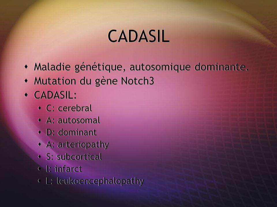 CADASIL Maladie génétique, autosomique dominante. Mutation du gène Notch3 CADASIL: C: cerebral A: autosomal D: dominant A: arteriopathy S: subcortical