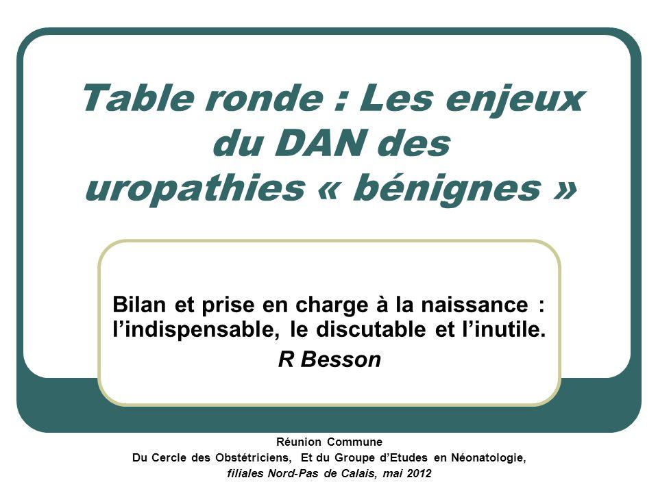 Table ronde : Les enjeux du DAN des uropathies « bénignes » Bilan et prise en charge à la naissance : lindispensable, le discutable et linutile. R Bes