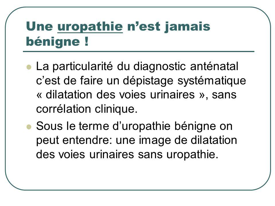 Une uropathie nest jamais bénigne ! La particularité du diagnostic anténatal cest de faire un dépistage systématique « dilatation des voies urinaires