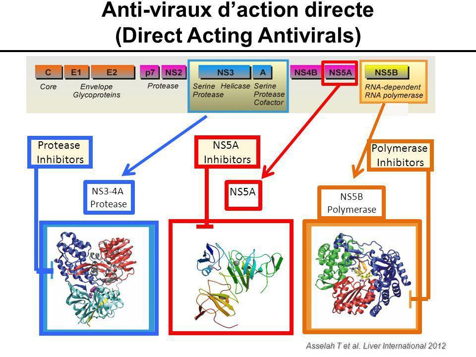 NS3-4A Protease NS5B Polymerase NS5A Protease Inhibitors Polymerase Inhibitors NS5A Inhibitors Asselah T et al. Liver International 2012 Anti-viraux d