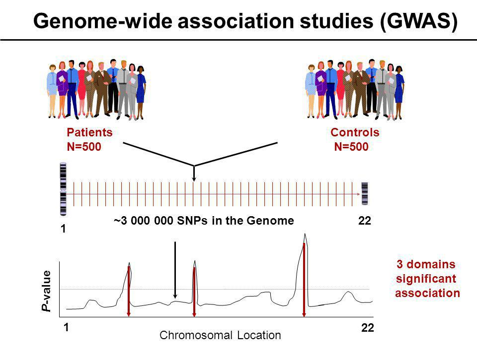 Patients N=500 Controls N=500 1 22 ~3 000 000 SNPs in the Genome P-value 1 22 3 domains significant association Chromosomal Location Genome-wide assoc