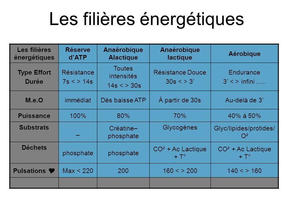 Les filières énergétiques Réserve dATP Anaérobique Alactique Anaérobique lactique Aérobique Type Effort Durée Résistance 7s 14s Toutes intensités 14s