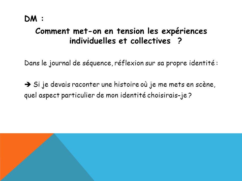DM : Comment met-on en tension les expériences individuelles et collectives ? Dans le journal de séquence, réflexion sur sa propre identité : Si je de