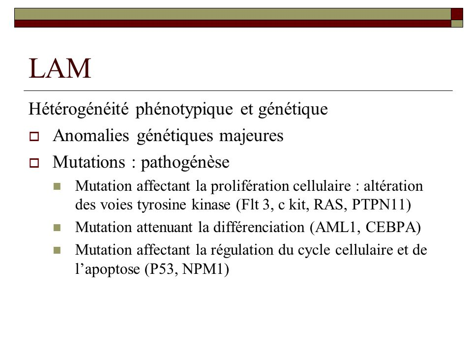LAM Hétérogénéité phénotypique et génétique Anomalies génétiques majeures Mutations : pathogénèse Mutation affectant la prolifération cellulaire : alt