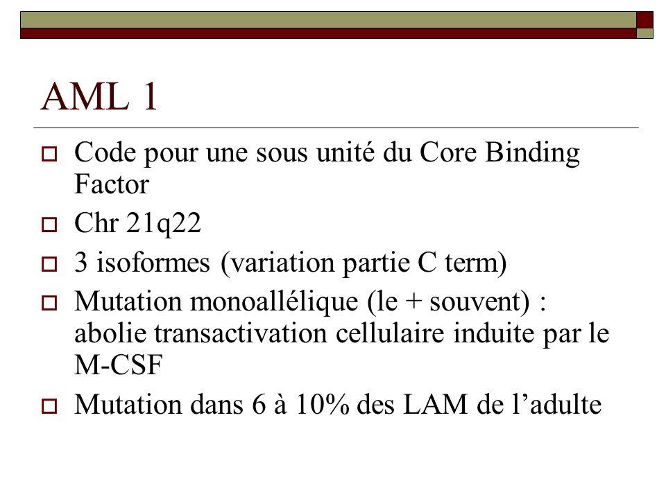 AML 1 Code pour une sous unité du Core Binding Factor Chr 21q22 3 isoformes (variation partie C term) Mutation monoallélique (le + souvent) : abolie t