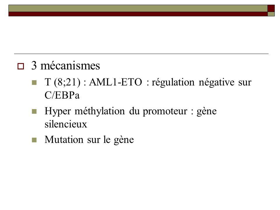 3 mécanismes T (8;21) : AML1-ETO : régulation négative sur C/EBPa Hyper méthylation du promoteur : gène silencieux Mutation sur le gène