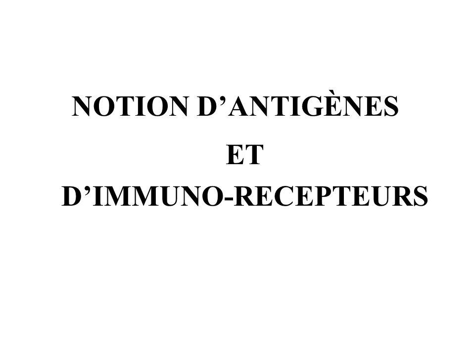 NOTION DANTIGÈNES ET DIMMUNO-RECEPTEURS