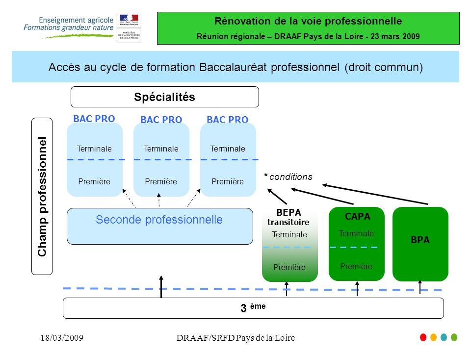 Rénovation de la voie professionnelle Réunion régionale – DRAAF Pays de la Loire - 23 mars 2009 18/03/2009DRAAF/SRFD Pays de la Loire Parcours dans le cadre de lapprentissage Parcours mixant formation scolaire et apprentissage Bac pro 3ème année 2nde année 1ère année ** CAPA /BPA BEPA transitoire Terminale Première Bac pro Terminale Première Tout le parcours par apprentissage « 2 + 2 ans »« 3 ans »* * En attente modification réglementaire ** différent de le 2nde professionnelle scolaire 2nde pro Bac pro Terminale Première