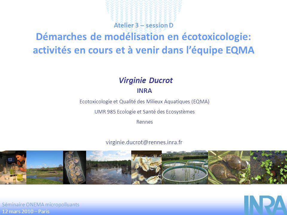 Atelier 3 – session D Démarches de modélisation en écotoxicologie: activités en cours et à venir dans léquipe EQMA Virginie Ducrot virginie.ducrot@ren