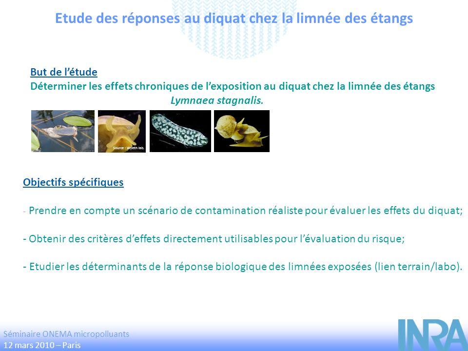 Etude des réponses au diquat chez la limnée des étangs Objectifs spécifiques - Prendre en compte un scénario de contamination réaliste pour évaluer le