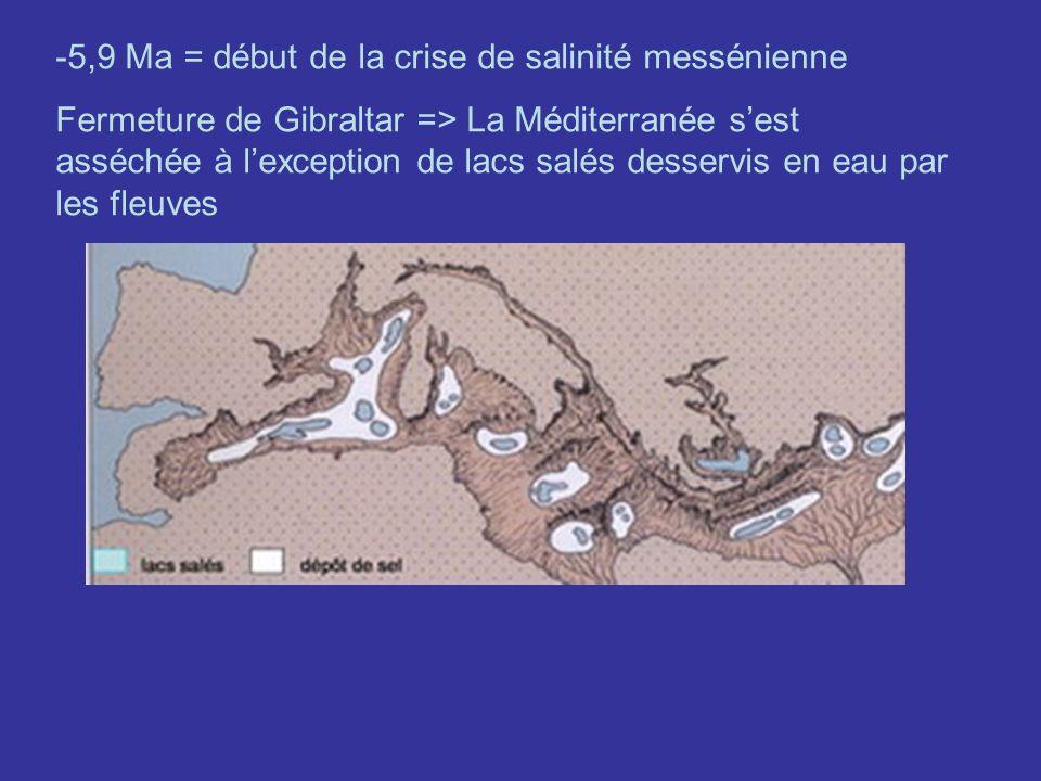 -5,9 Ma = début de la crise de salinité messénienne Fermeture de Gibraltar => La Méditerranée sest asséchée à lexception de lacs salés desservis en ea