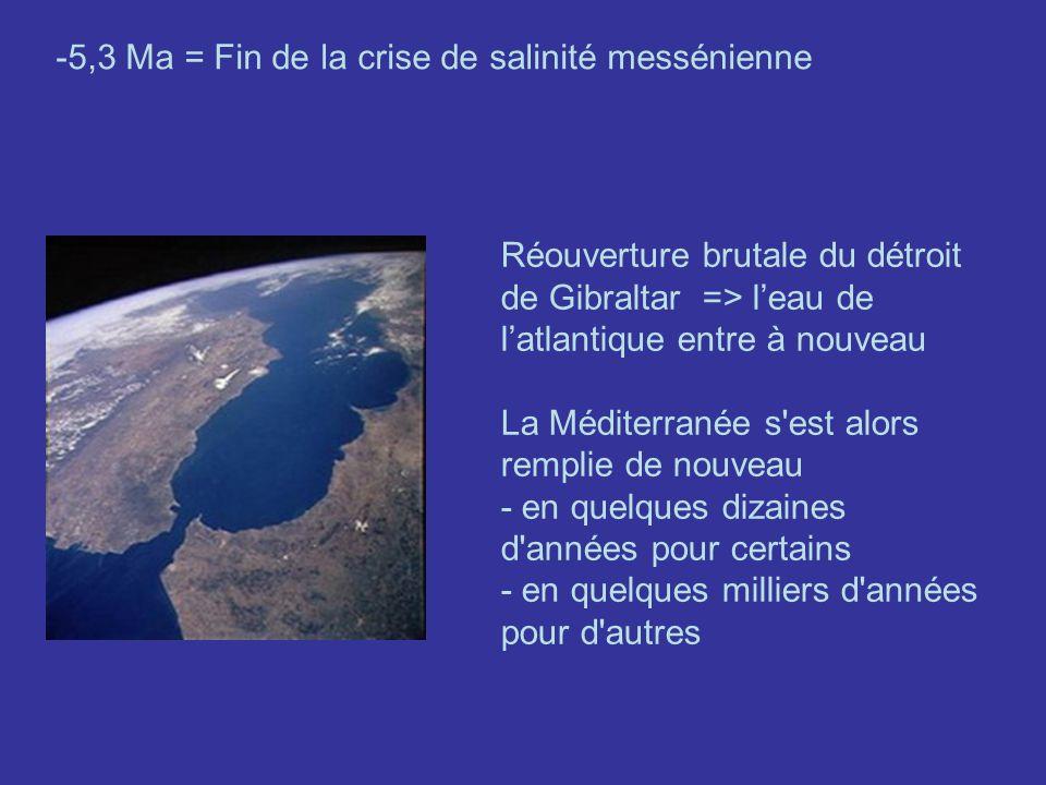 -5,3 Ma = Fin de la crise de salinité messénienne Réouverture brutale du détroit de Gibraltar => leau de latlantique entre à nouveau La Méditerranée s