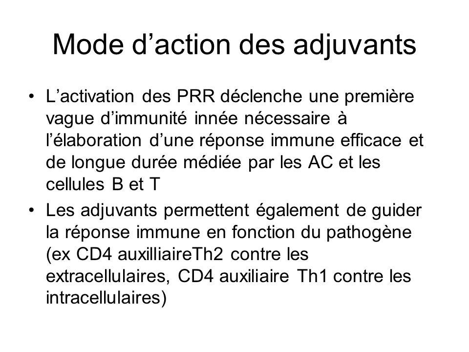 Mode daction des adjuvants Lactivation des PRR déclenche une première vague dimmunité innée nécessaire à lélaboration dune réponse immune efficace et de longue durée médiée par les AC et les cellules B et T Les adjuvants permettent également de guider la réponse immune en fonction du pathogène (ex CD4 auxilliaireTh2 contre les extracellulaires, CD4 auxiliaire Th1 contre les intracellulaires)