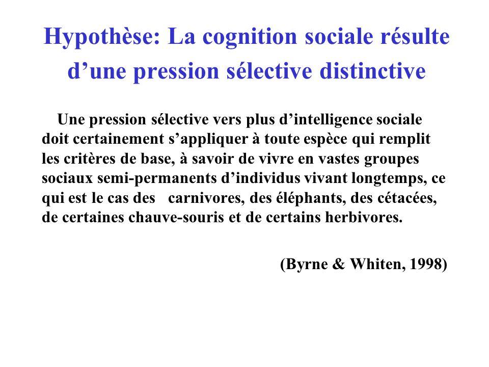 Hypothèse: La cognition sociale résulte dune pression sélective distinctive Une pression sélective vers plus dintelligence sociale doit certainement s