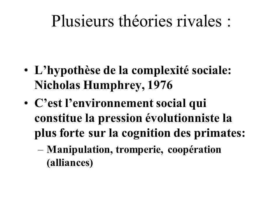 Plusieurs théories rivales : Lhypothèse de la complexité sociale: Nicholas Humphrey, 1976 Cest lenvironnement social qui constitue la pression évoluti