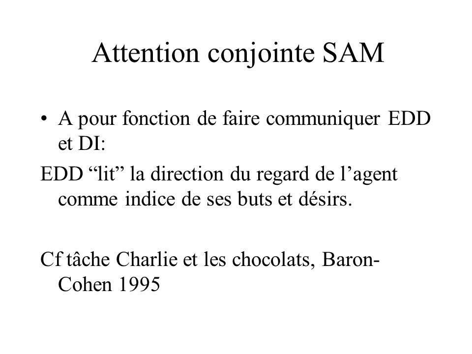 Attention conjointe SAM A pour fonction de faire communiquer EDD et DI: EDD lit la direction du regard de lagent comme indice de ses buts et désirs. C