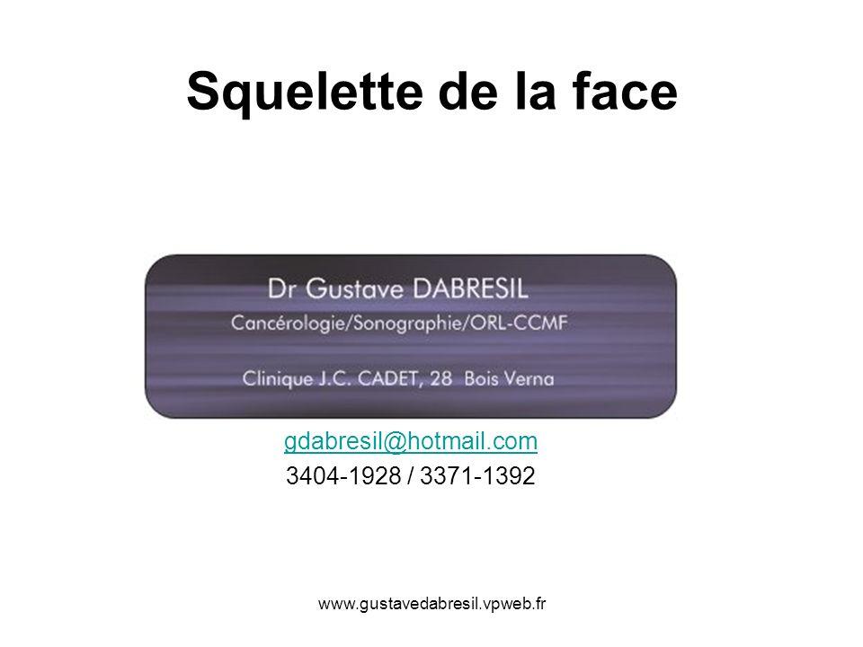www.gustavedabresil.vpweb.fr Les os de la face 14 os 2 impairs vomer et mandibule 6 pairs maxillaire sup, cornet sup, palatin, os malaire, os nasal, os lacrymal