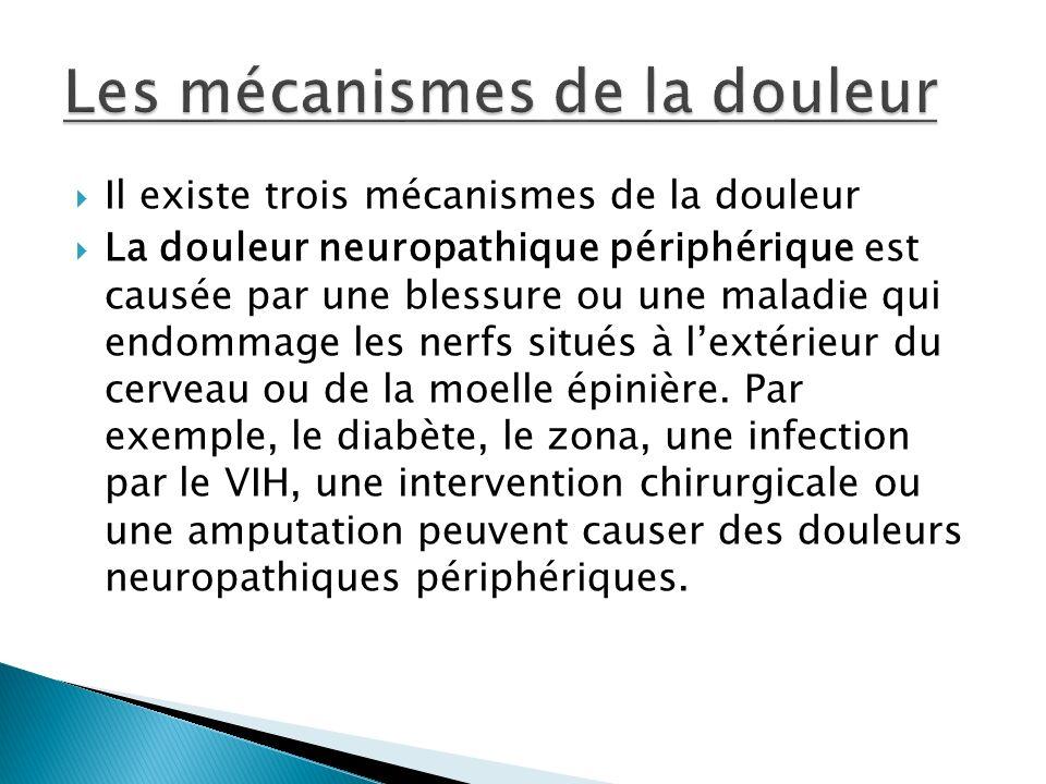 Il existe trois mécanismes de la douleur La douleur neuropathique périphérique est causée par une blessure ou une maladie qui endommage les nerfs situ