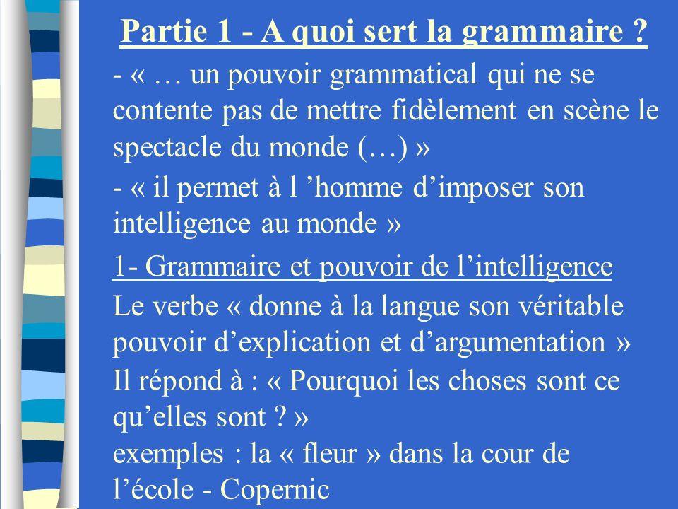Partie 1 - A quoi sert la grammaire ? - « … un pouvoir grammatical qui ne se contente pas de mettre fidèlement en scène le spectacle du monde (…) » -
