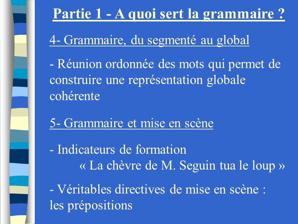 Partie 1 - A quoi sert la grammaire ? 4- Grammaire, du segmenté au global - Réunion ordonnée des mots qui permet de construire une représentation glob