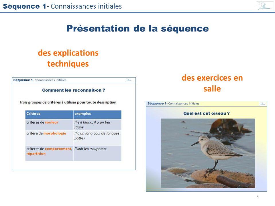 Séquence 1 - Connaissances initiales Présentation de la séquence des explications techniques des exercices en salle 3