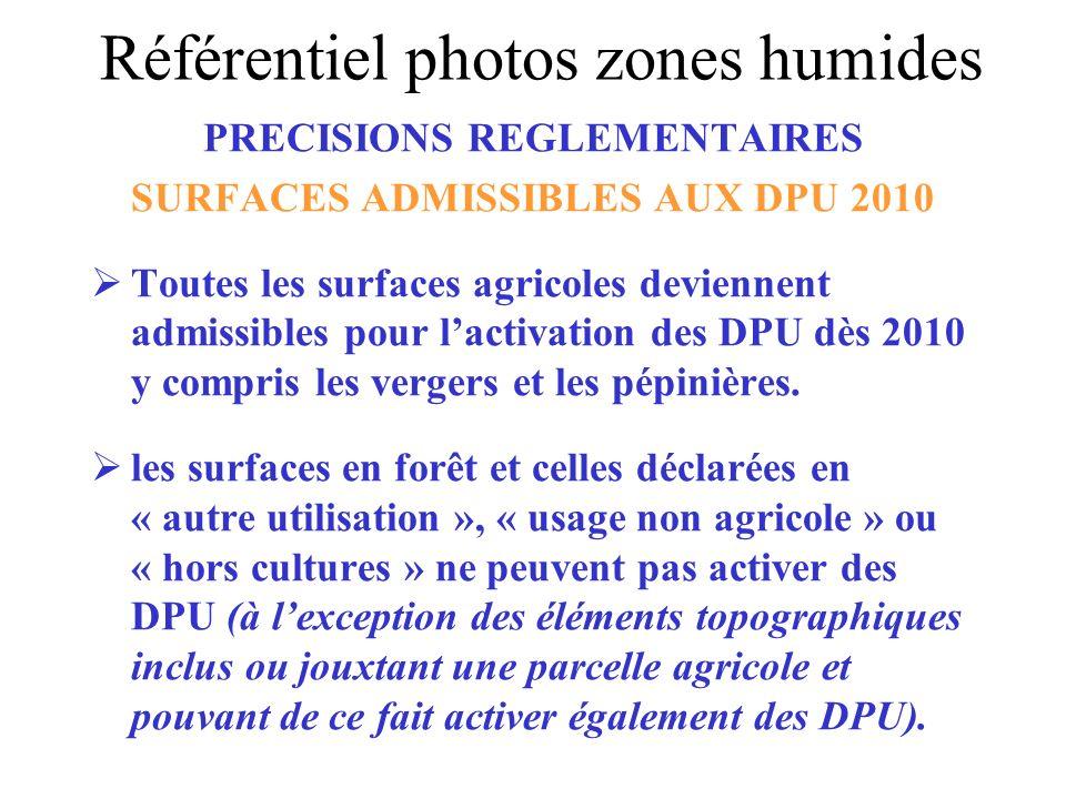 PRECISIONS REGLEMENTAIRES SURFACES ADMISSIBLES AUX DPU 2010 Toutes les surfaces agricoles deviennent admissibles pour lactivation des DPU dès 2010 y c