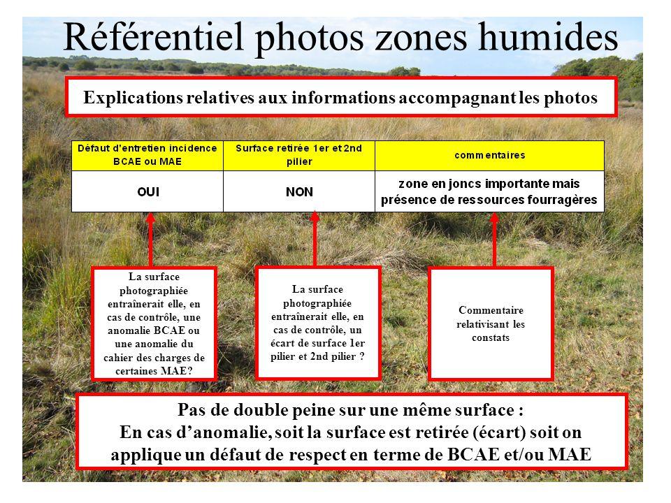 La surface photographiée entraînerait elle, en cas de contrôle, une anomalie BCAE ou une anomalie du cahier des charges de certaines MAE? La surface p