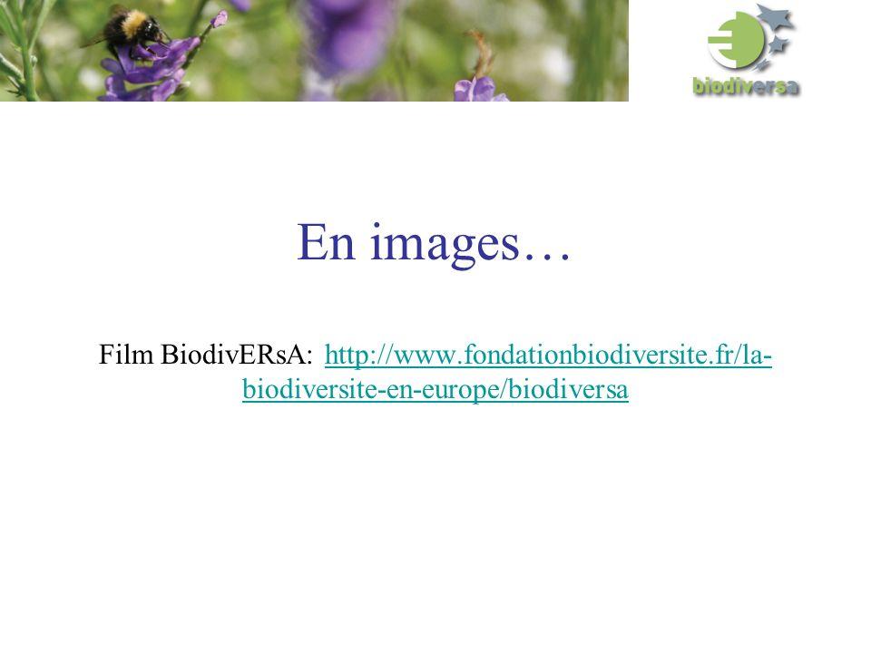 En images… Film BiodivERsA: http://www.fondationbiodiversite.fr/la- biodiversite-en-europe/biodiversahttp://www.fondationbiodiversite.fr/la- biodiversite-en-europe/biodiversa