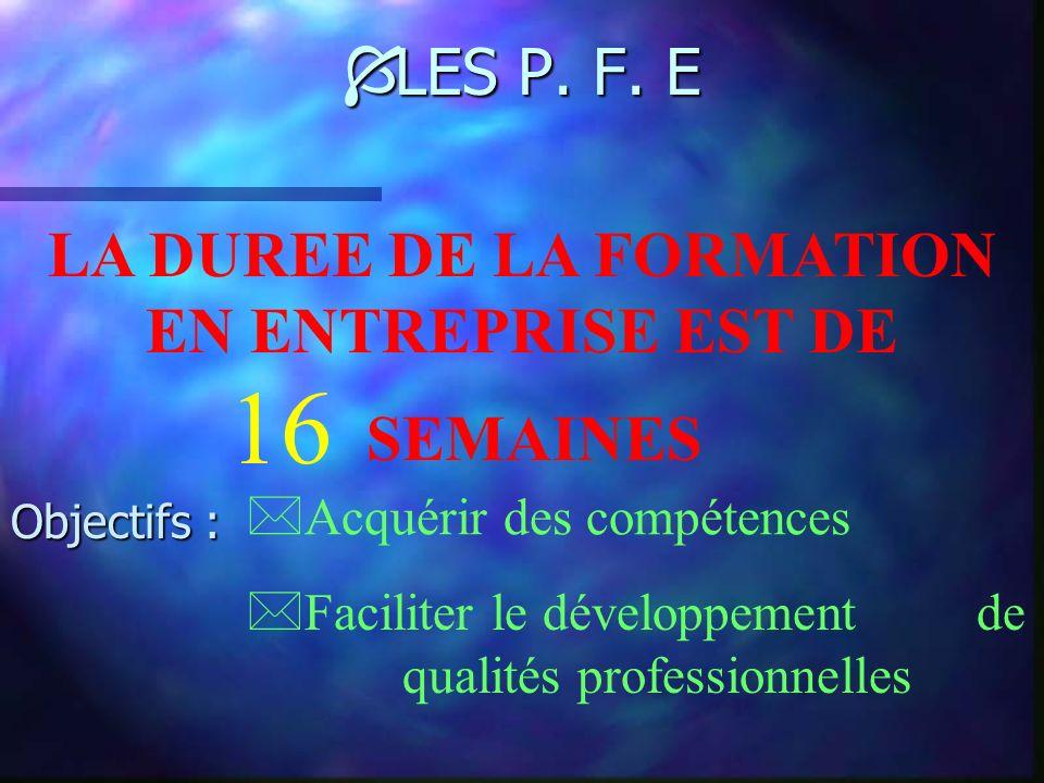 Ì DES COMPETENCES EXHAUSTIVES Option B : PRODUITS D EQUIPEMENT COURANT COMPETENCE 1 COMPETENCE 2 COMPETENCE 3 COMPETENCE 4 Réceptionner les produits e