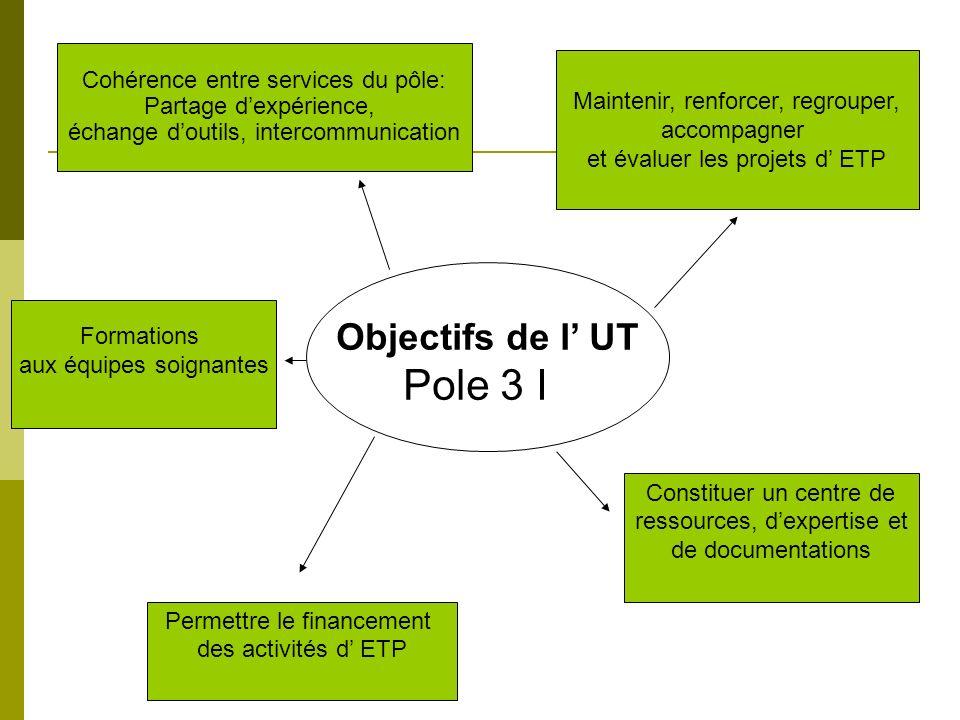 Objectifs de l UT Pole 3 I Cohérence entre services du pôle: Partage dexpérience, échange doutils, intercommunication Maintenir, renforcer, regrouper,