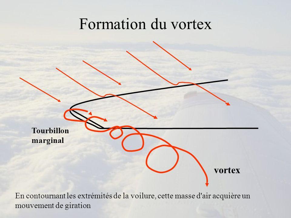 Formation du vortex Aile Saumon Tourbillon marginaux Vortex