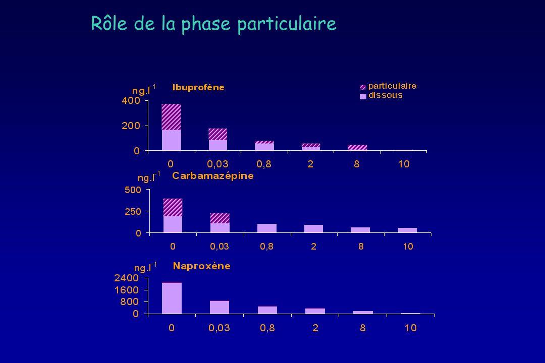 Rôle de la phase particulaire