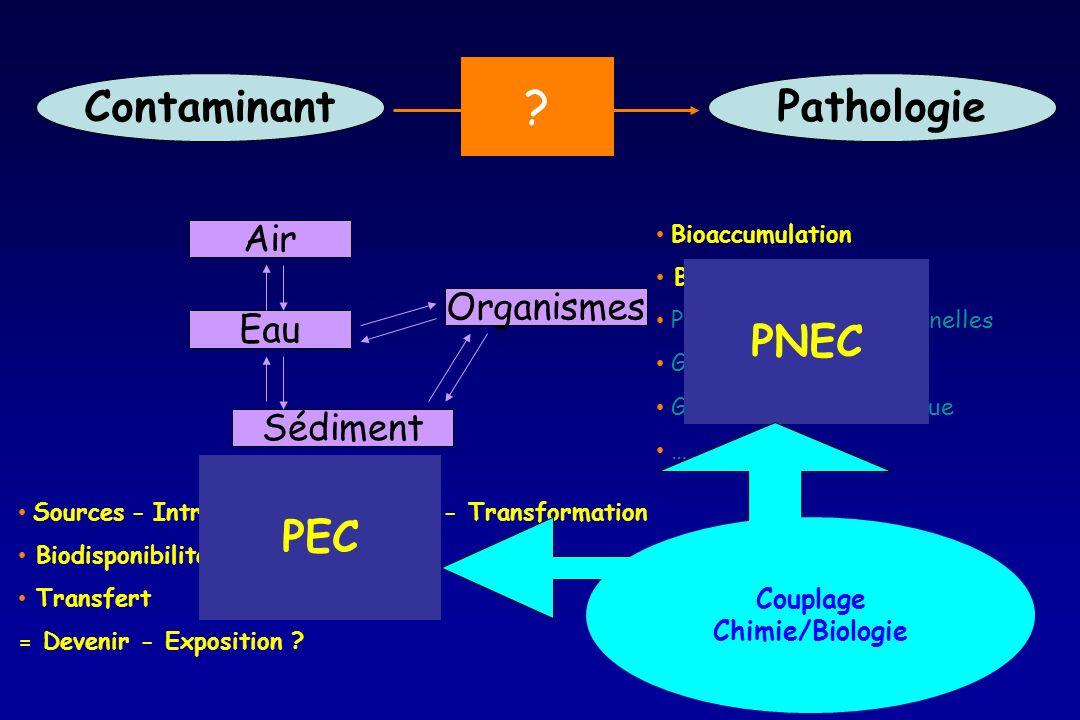 ContaminantPathologie ? Air Eau Sédiment Organismes Bioaccumulation Biotransformation Perturbations Fonctionnelles Génotoxicité Génomique – Protéomiqu