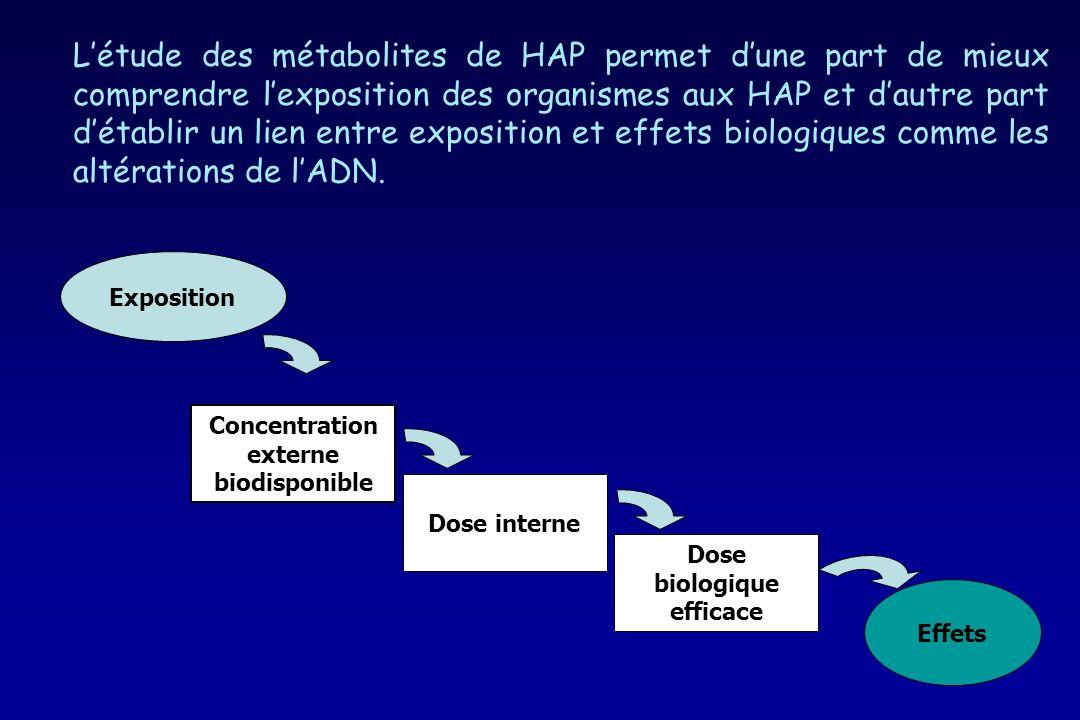 Concentration externe biodisponible Effets Exposition Dose interne Dose biologique efficace Létude des métabolites de HAP permet dune part de mieux co