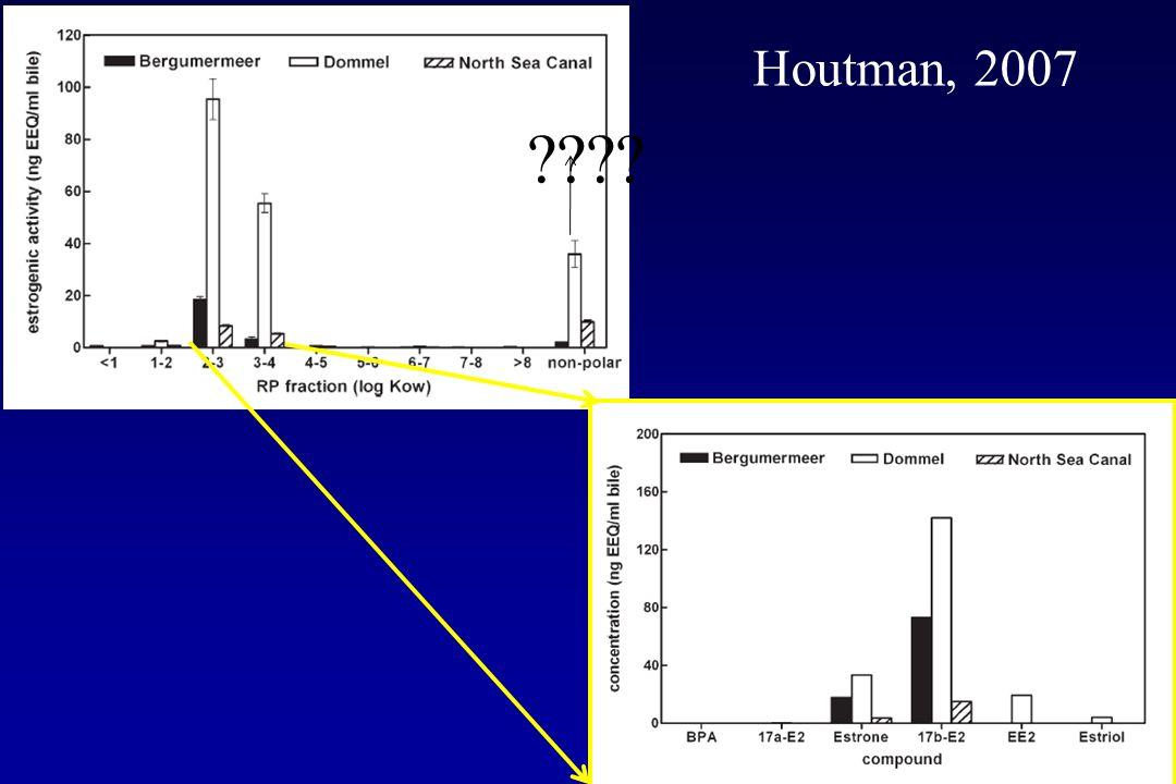 ???? Houtman, 2007