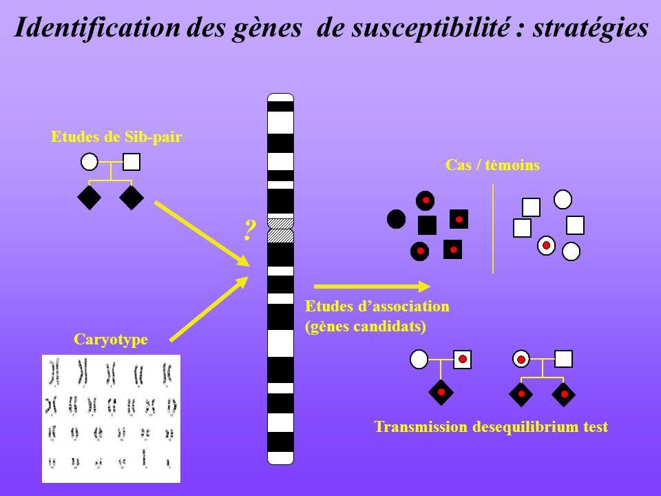 Identification des gènes de susceptibilité : stratégies Etudes de Sib-pair Transmission desequilibrium test Etudes dassociation (gènes candidats) Cas