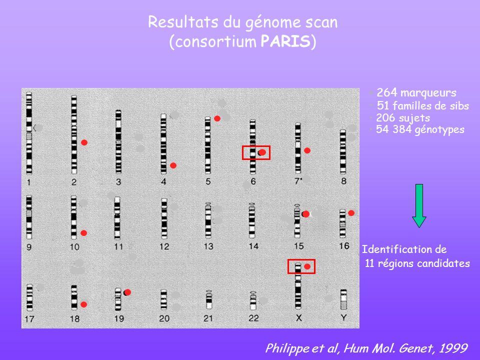 Resultats du génome scan (consortium PARIS) Identification de 11 régions candidates 264 marqueurs 51 familles de sibs 206 sujets 54 384 génotypes Phil