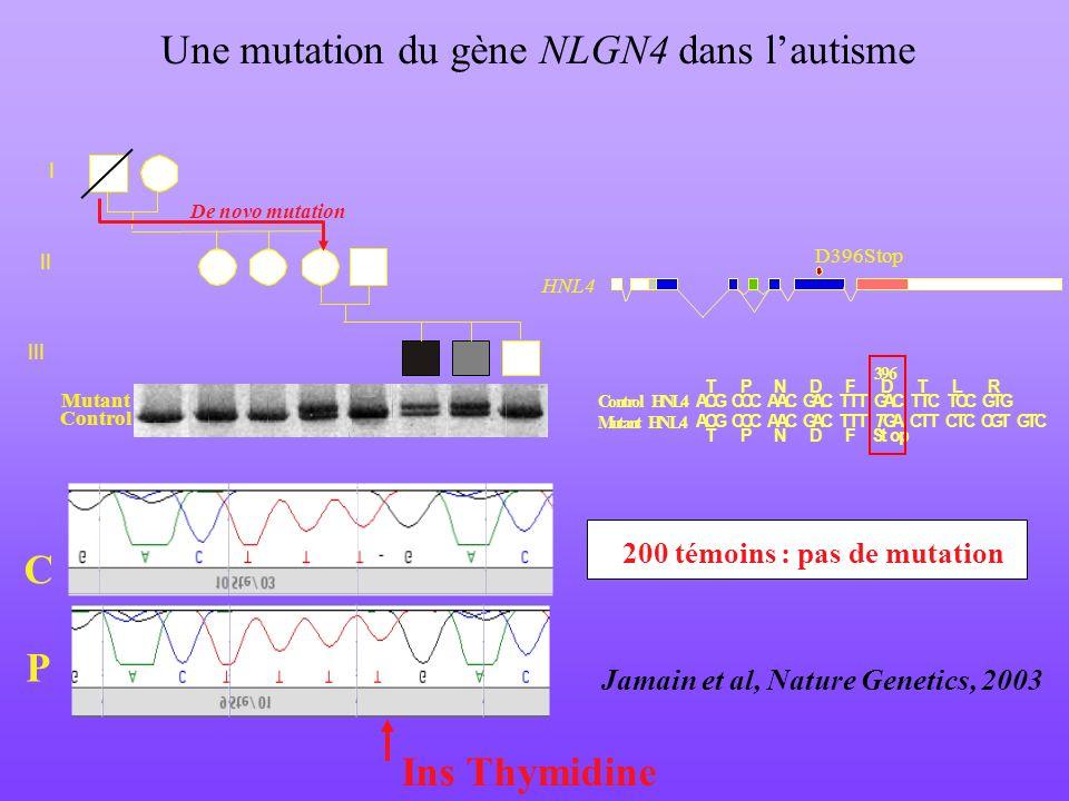 Une mutation du gène NLGN4 dans lautisme ACG CCC AAC GAC TTT TGA CTT CTC CGT GTC T PN D F Stop T PN D F D T L R ACG CCC AAC GAC TTT GAC TTC TCC GTG Co