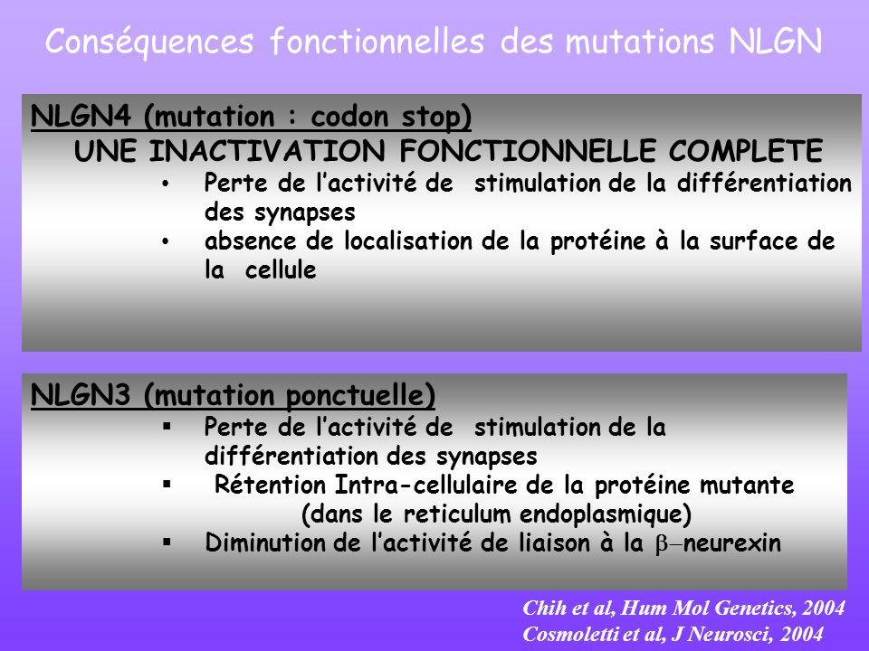 Conséquences fonctionnelles des mutations NLGN NLGN3 (mutation ponctuelle) Perte de lactivité de stimulation de la différentiation des synapses Rétent