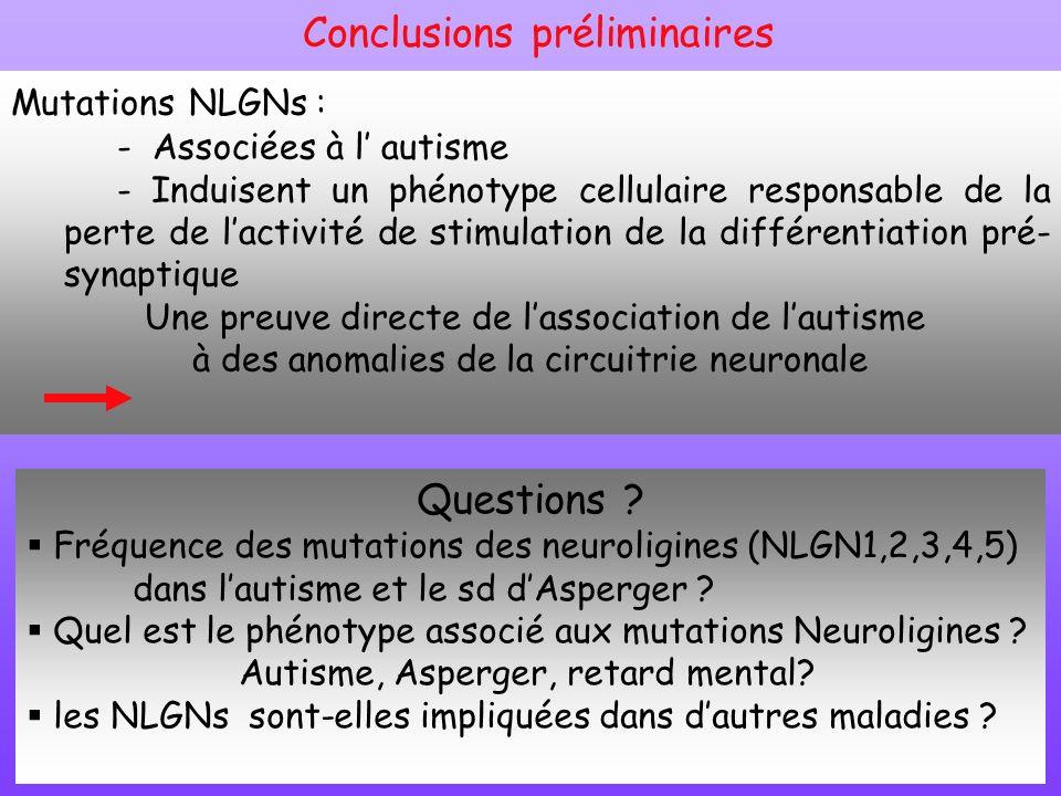 Mutations NLGNs : - Associées à l autisme - Induisent un phénotype cellulaire responsable de la perte de lactivité de stimulation de la différentiatio