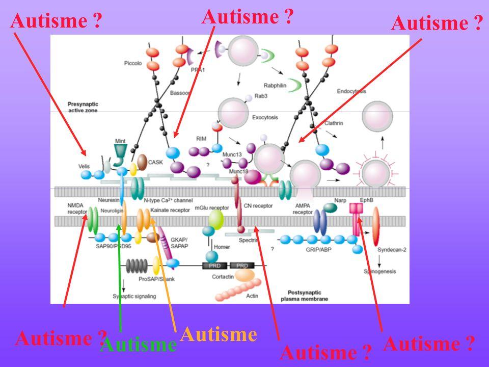 Autisme Autisme ? Autisme