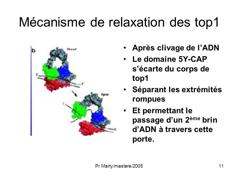 Pr Marty/mastere/200511 Mécanisme de relaxation des top1 Après clivage de lADN Le domaine 5Y-CAP sécarte du corps de top1 Séparant les extrémités romp