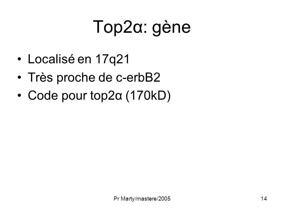 Pr Marty/mastere/200514 Top2α: gène Localisé en 17q21 Très proche de c-erbB2 Code pour top2α (170kD)