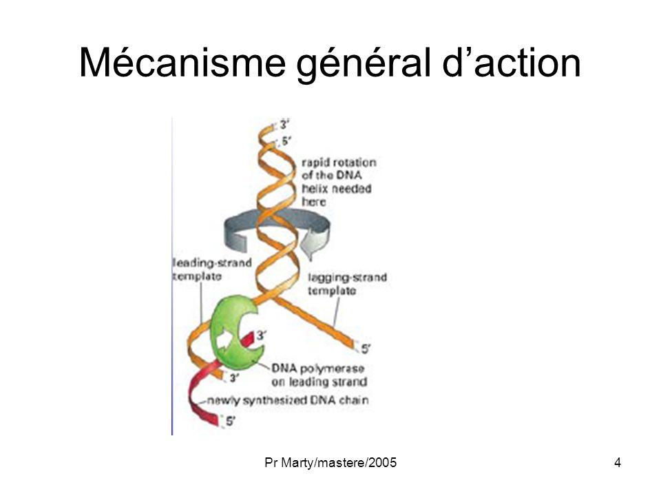 Pr Marty/mastere/20055 Structure des Topoisomérases Toutes ont un résidu tyrosine qui attaque le squelette phosphate de lADN Lénergie du pont phosphodiester est préservée sous la forme dune liaison covalente réversible ADN-protéine