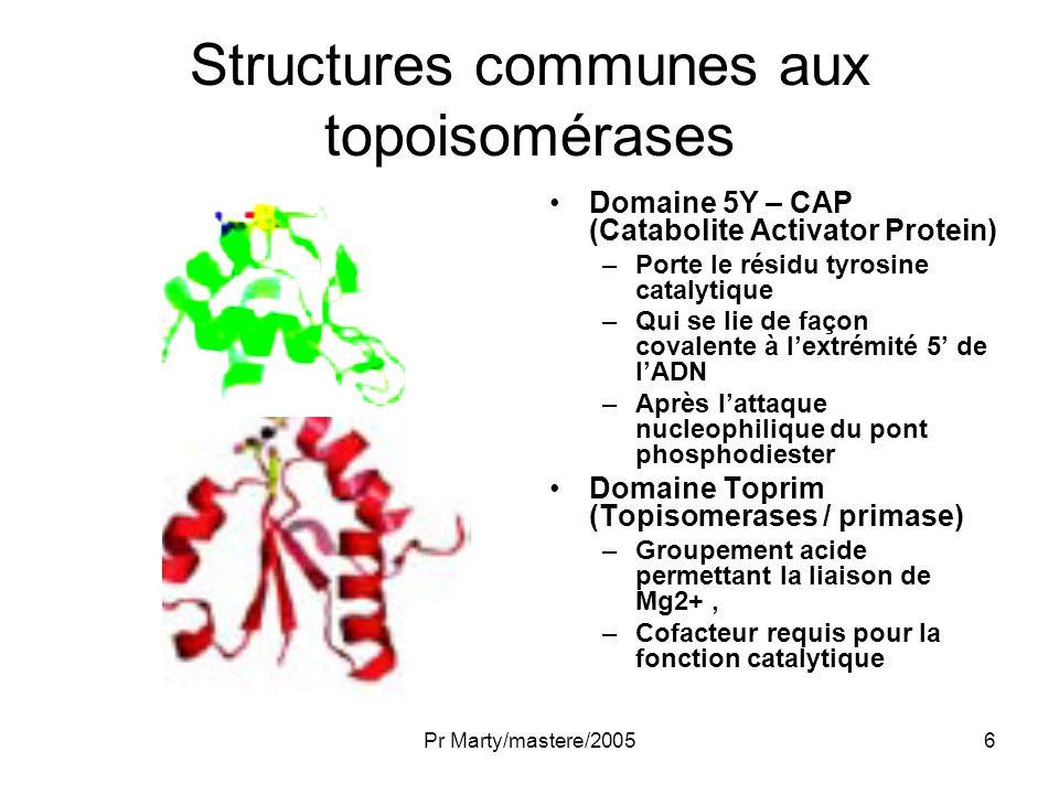 Pr Marty/mastere/20057 Structures communes aux topoisomérases Domaine GHKL ATPase –Se dimérisent après liaison ATP –Pour former une « porte » –A travers laquelle les duplex dADN passent Domaine de transduction –Essentiel pour lhydrolyse d ATP