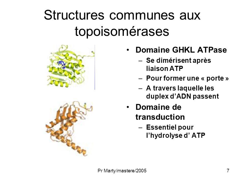 Pr Marty/mastere/20058 ADN topoisomérase I Réduit le super-enroulement de lADN –En créant une cassure monocaténaire transitoire –A travers laquelle un ADN intact mono- ou bicaténaire passe –Puis en réparant la cassure.