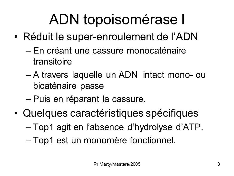 Pr Marty/mastere/20058 ADN topoisomérase I Réduit le super-enroulement de lADN –En créant une cassure monocaténaire transitoire –A travers laquelle un