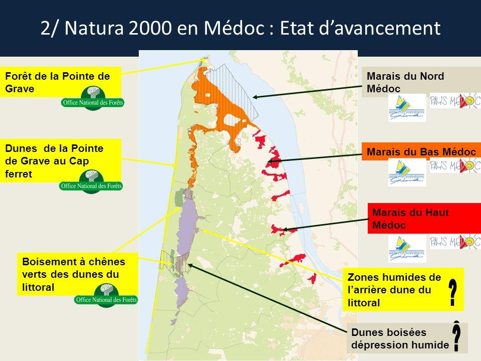 2/ Natura 2000 en Médoc : Etat davancement Forêt de la Pointe de Grave Dunes de la Pointe de Grave au Cap ferret Boisement à chênes verts des dunes du