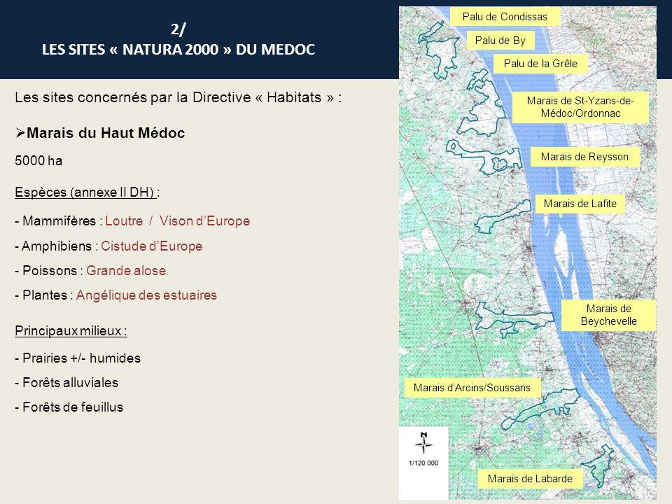 Les sites concernés par la Directive « Oiseaux » : Marais du Nord Médoc 23 987 ha Superposition avec le site des Marais du Bas Médoc Oiseaux : - 67 espèces dont : - 28 inscrites à lannexe I de la DO - 39 espèces migratrices non visées par lannexe I 2/ LES SITES « NATURA 2000 » DU MEDOC Vasière Mattes Prairies humides Marais de La Perge et du Gua Le Mourey Le Labiney Lespau Le Bergey Roussignan Palus de Molua